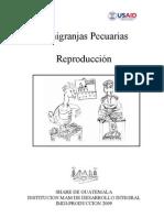 incubacion-sanantio-12-02-09