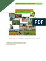 Estancamiento Del Sector Agricola de La Republica Dominicana y Posibles Soluciones a Estos