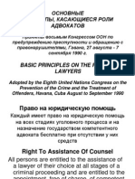Basic Principles on the Role of Lawyers