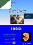 desarrollo del embararo.ppt