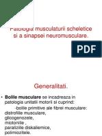 4 Patologia Musculaturii Scheletice Si a Sinapsei Neuromusculare