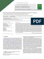 QD Molecular Beacon for FISH in E Coli - Pang, Biosensors Bioelectr 2010