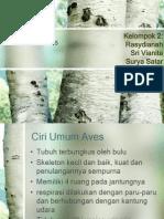 Aves Kelompok 2
