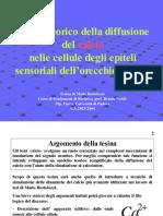 diffusione_del_calcio.pdf