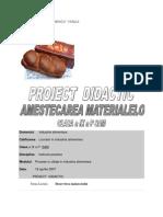 Proiect Lectie Industrie Alimentara