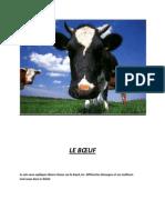 cours-sur-le-boeuf.pdf