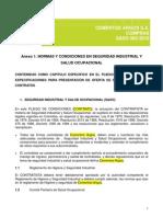 Anexo+1+Normas+y+Condiciones+en+Seguridad+Industrial+Salud+Ocupacional+V002 2010