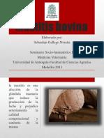 mastitisbovina-130411112258-phpapp02
