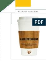 Antreprenoriat - Vers_ Prezentare
