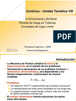 Analisis Dimensional - Perdida Carga - Capa Limite