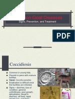 7. Goat Diseases