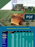 Quiroga_CaracterizacionAmbienteMayorEficienciaProduccion.pdf