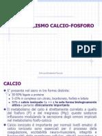 Metabolismo Calcio Fosforo