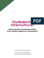 Pnud Libro Ciudadania Intercultural - 2013