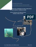 PROYECTO VALDES - Informe Preliminar Trabajos Marzo 2013