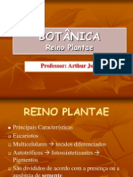 Botanica - Reino Plantae