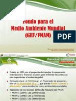 FMAM Caracas 2013