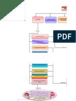 Mapa Conceptual de Estres Laboral