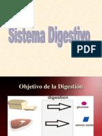 s. Digestivo