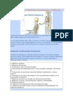 Lesión Osteopática - Disfunción y Compensación - Clasificación