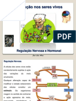 RegulaçaoNervosaHormonal
