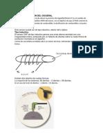 Documento CKP CMP