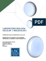 Laboratorio II Biologia Celular y Molecular i