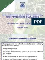 Manejo Agronomico Del Cafe (1)