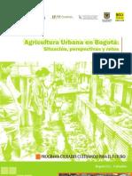 Agricultura Urbana 13