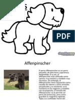 tipos-de-perros-Diapositivas.pps