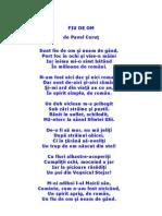 FIU de OM de Pavel Corut