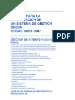 MANUAL OHSAS 18000.docx