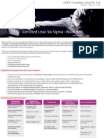 Six Sigma Black Belt Model Flyer