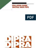DIP Instalation Guide