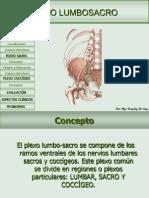 plexolumbosacro-100502191842-phpapp01