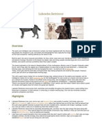 Important dog breeds & characteristics