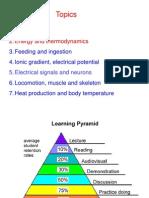 2 Energy and Thermodynamics