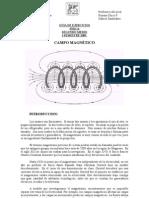 Guia_de_campo_magnetico[1]