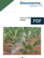 Curso de Bananicultura Irrigada - Embrapa