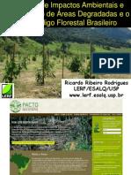 palestraRicardo Rodrigues2012