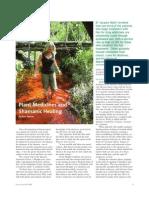 Plant Medicines & Shamanic Healing Positive Health Magazine