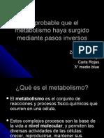 metabolismo inverso