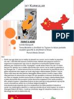 Tema:Modelet e zhvillimit te Tigrave te Azise perballe modelit specifik te zhvillimit te Kines