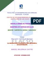 TFLACSO-2008SMC