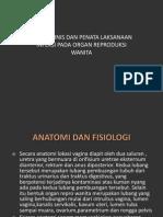 Aspek Klinis Dan Penatalaksanaan