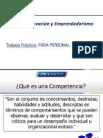 IyE 2013 CompetenciasAnclasYCreatividad