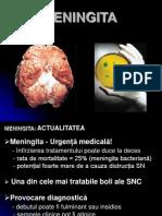 Meningite - prelegere 2010.ppt