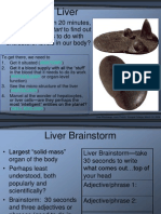 Liver Function 3