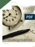 Miguel Udaondo_Fuentes_energia(4) -Organización interna