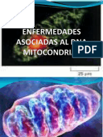 Enfermedades Asociadas Al Dna Mitocondrial